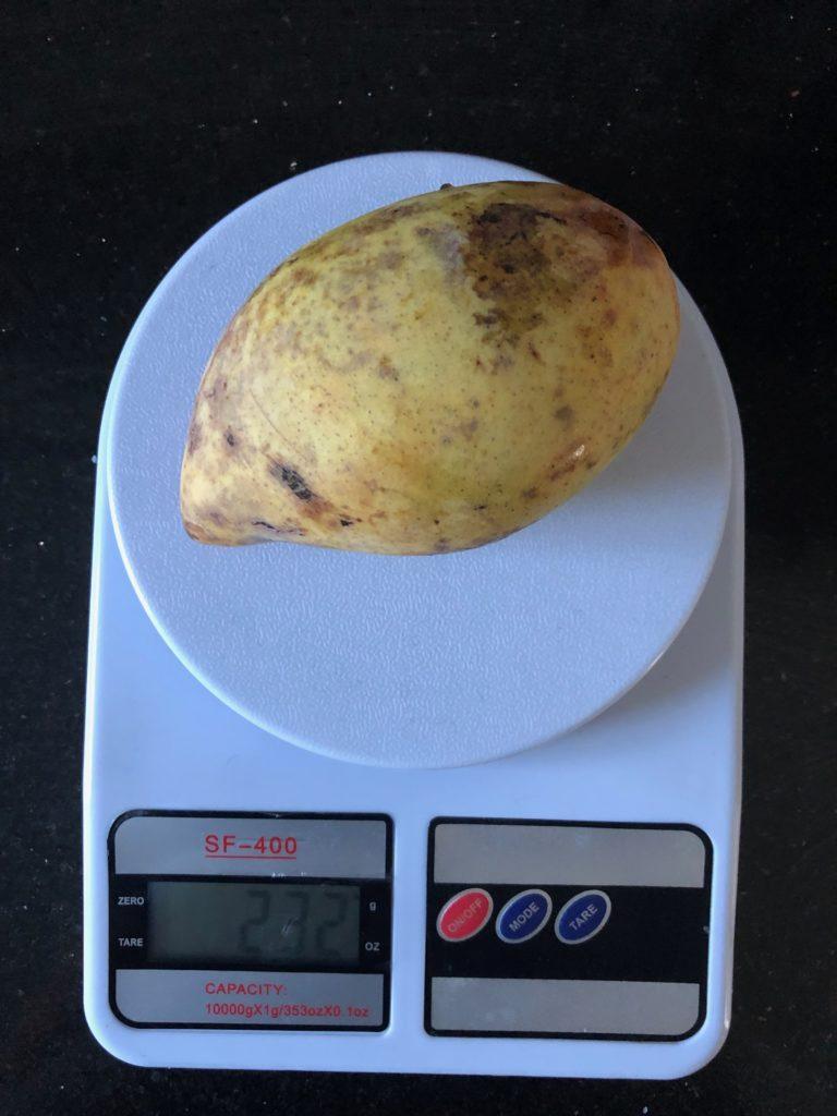 вес манго