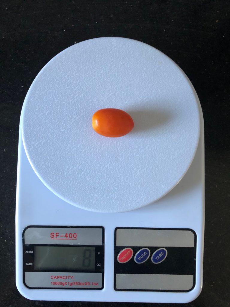 вес помидора черри