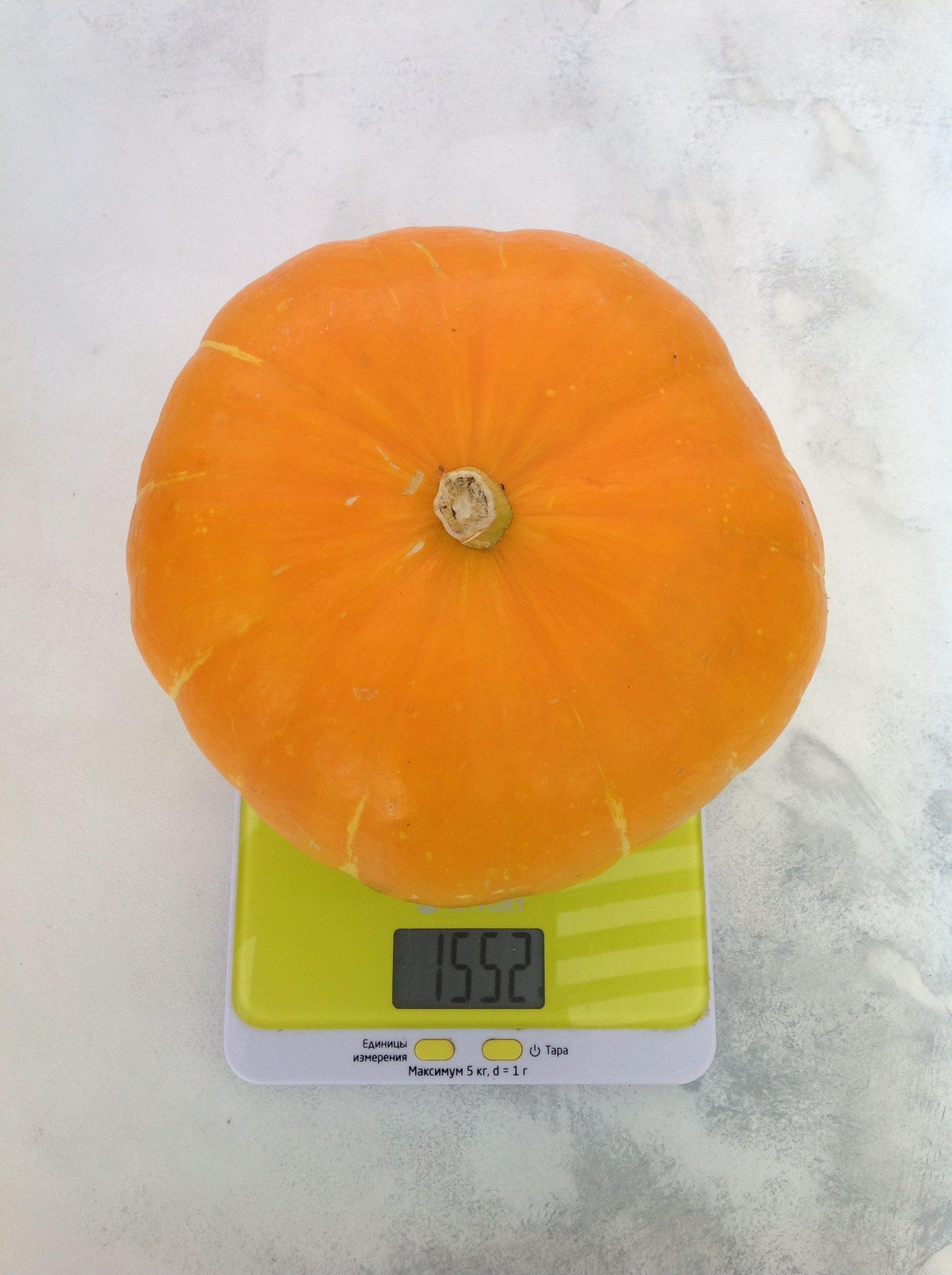 вес тыквы малой