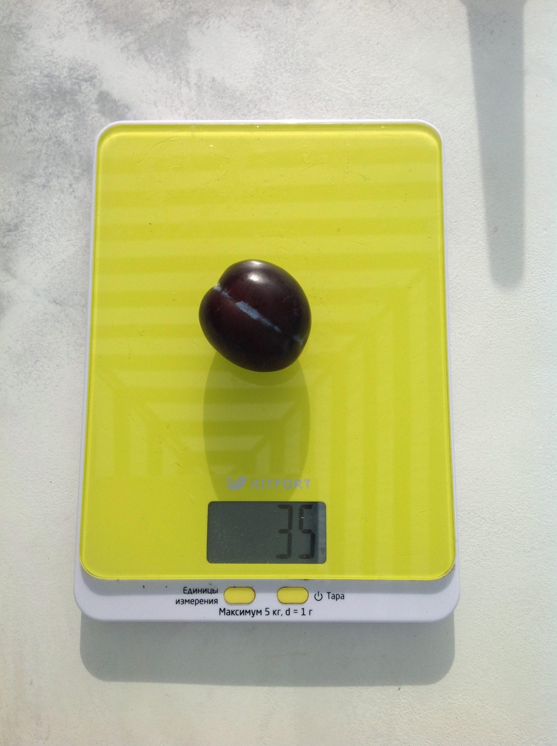 вес сливы чернослив