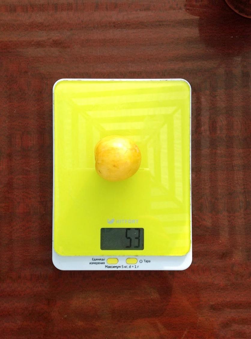 вес сливы желтой