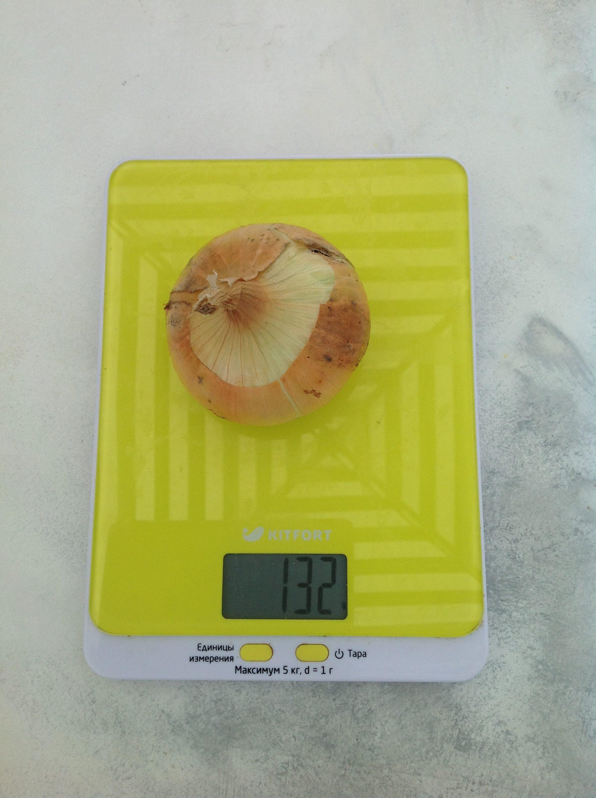 вес луковицы желтой средней