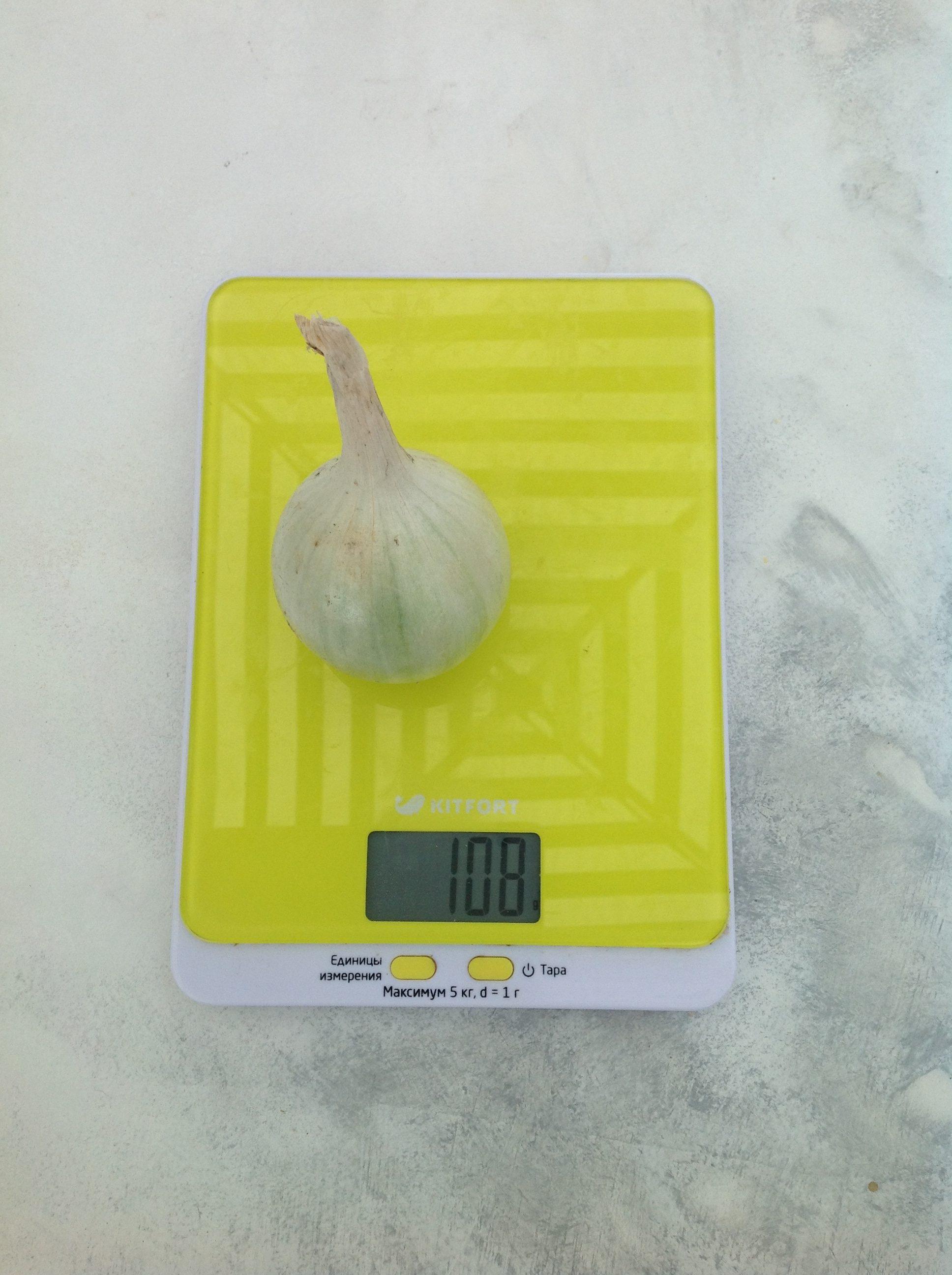 вес луковицы белой средней