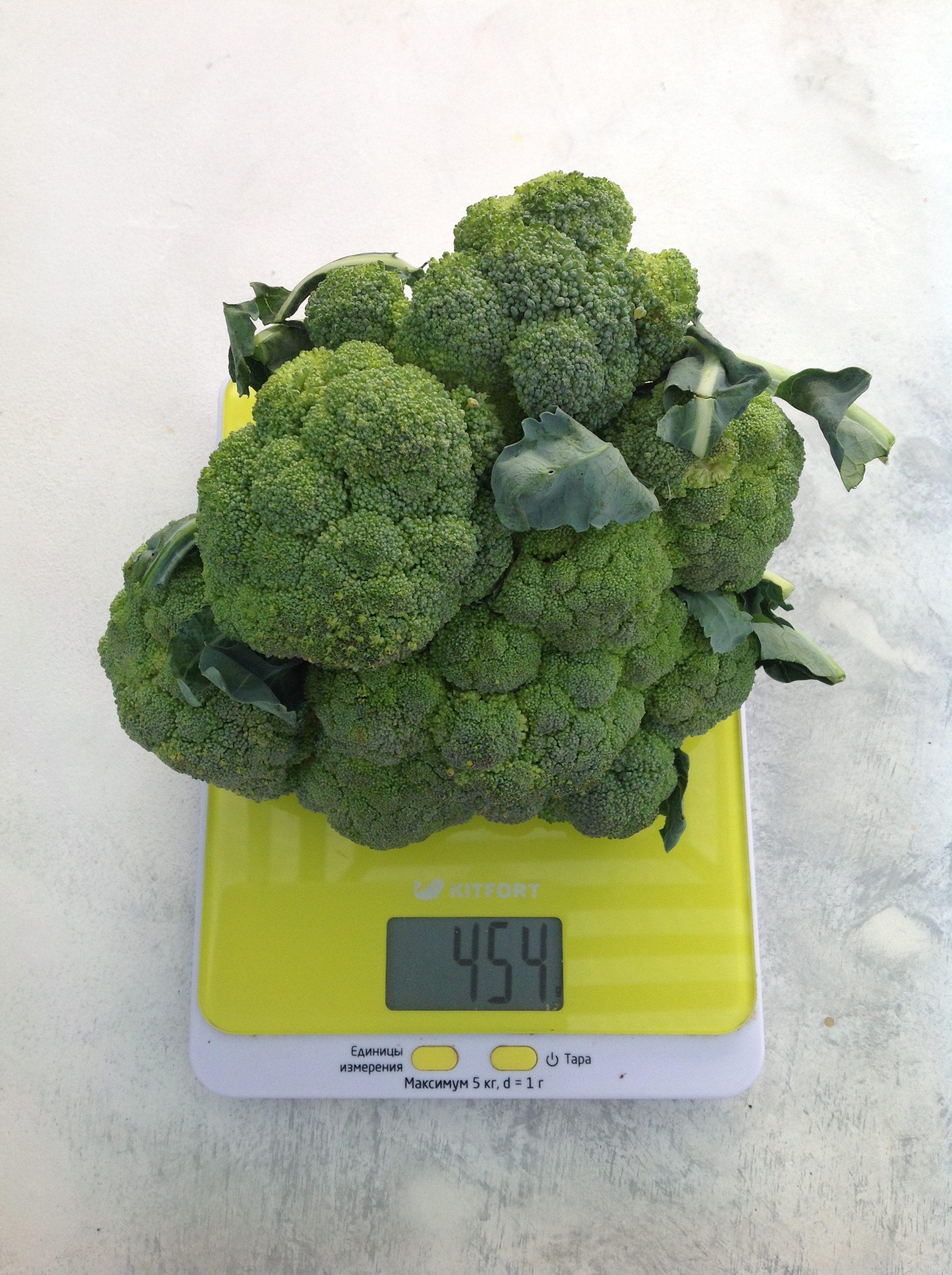 вес брокколи средней