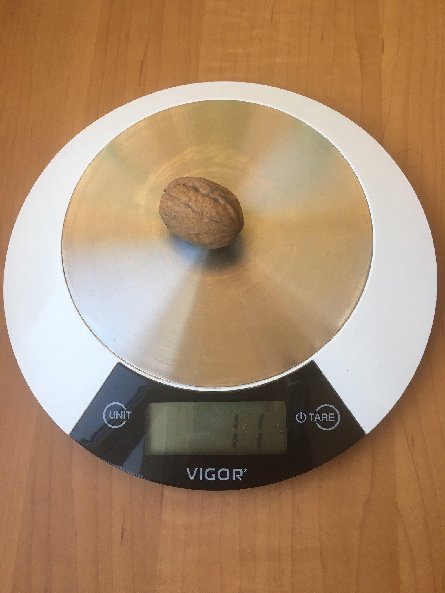 вес ореха грецкого